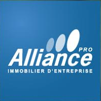Logo Alliance Immobilier Pro